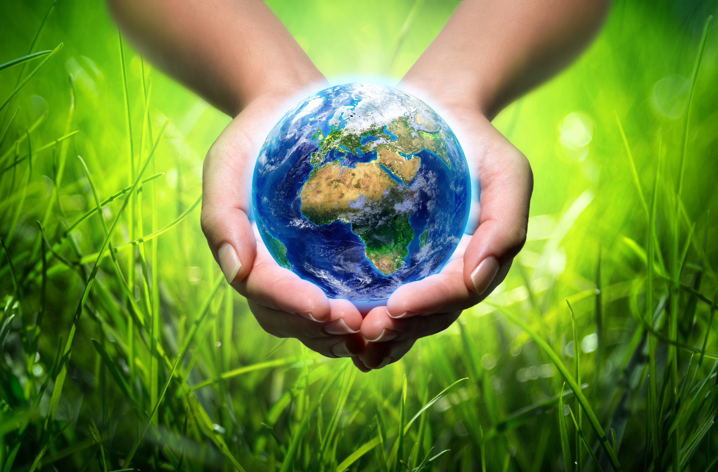 Politica Y Compromiso Con El Medio Ambiente on Earth Day Resources 2015